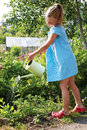 Little girl watering the flowers in the family garden at a summe summer day Royalty Free Stock Image