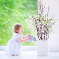Little girl watering flowers at home cute funny toddler with curly hair wearing a blue festive dress cherry blossom tree in a Stock Photography