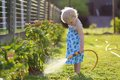 Little girl watering plants in the garden Royalty Free Stock Photo