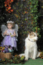 Little girl with wings and a dog portrait of her butterfly her Royalty Free Stock Photos