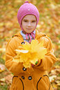 Little girl in yellow coat collects yellow maple leaves pretty smiling with pink cap autumn city park Stock Photography