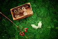 These little glass bubbles are in wooden box juicy moss and next to branch of red berries hypericum a lot a a Royalty Free Stock Image