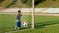 Little goalkeeper kicking ball Stock Images