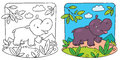 Little hippo coloring book Royalty Free Stock Photo
