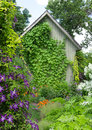 Little house in a flowering garden ivy crawling up the wall Stock Photography