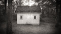 Little house in the forest white abandoned late evening Royalty Free Stock Images