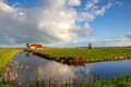Little house river and white puffy clouds on blue sky Royalty Free Stock Photos