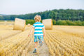 Little kid boy playing on hay field, outdoors Royalty Free Stock Photo