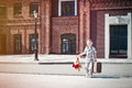 Little kid with suitcase and teddy bear toy crossing the sunny s is holding street in morning Royalty Free Stock Photo