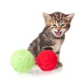 Little kitten crying with balls of color threads on white background cutout Stock Photo