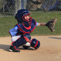 A little league catcher behind the plate concentrating Royalty Free Stock Photos