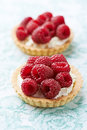 Little mascarpone tart with raspberries tarts Royalty Free Stock Images