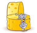 Little miсe on cheese