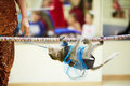 Little monkey climbs on rope upside down Stock Image