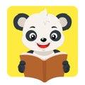 Little Panda Bear Reading A Brown Book.