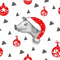 Little pig in Santa Claus hat on the white background