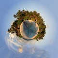 Little planet tropical island with palm trees Stock Photo