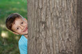 Little preschooler boy hide and seek at tree childhood Stock Images