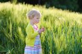 Little preschooler girl plays in wheat field adorable child blonde curly toddler playing outdoors wild green on a sunny summer day Royalty Free Stock Images