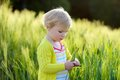 Little preschooler girl plays in wheat field adorable child blonde curly toddler playing outdoors wild green on a sunny summer day Stock Photography