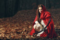 Little red riding hood  in the dark forest Royalty Free Stock Photo