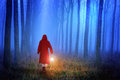 Little Red Riding Hood in the forest Royalty Free Stock Photo