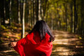 Little Red Riding Hood whit wolf shadow Royalty Free Stock Photo