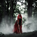 Little Red Riding Hood in the wild forest
