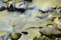 Little river rapids golden captured with motion blur and illuminated by reflected color from sunlit spring foliage great smoky Stock Photography