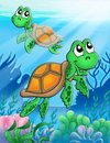 Little sea turtles Stock Images