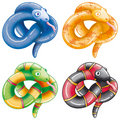 Little snakes Royalty Free Stock Images
