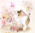 Little tabby kitten