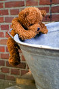 Little teddybear climbing Stock Images
