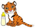 Little tiger with drink Royalty Free Stock Photo