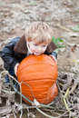 Little toddler boy on pumpkin field Stock Images