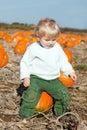 Little toddler boy on pumpkin field Royalty Free Stock Photo