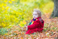 Little toddler girl wearing red in autumn park coat beautiful with curly hair a and colorful knitted scarf sitting a sunny having Stock Photo