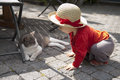 Little toddler talking to a cat outdoors Stock Photos