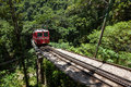 Little Train to Corcovado Royalty Free Stock Photo