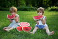 Little Twin Brothers Eating Watermelon on Green Grass in Summer Park Royalty Free Stock Photo
