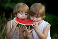 Little Twin Brothers Eating Watermelon Outdoors in Summer Park Royalty Free Stock Photo
