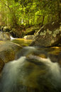 Little waterfall rainforest national park thailand Royalty Free Stock Photography