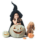 Little witch wondered with a dog around the pumpkin Royalty Free Stock Image