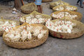 Live chickens for sale on the market in Kolkata Royalty Free Stock Photo