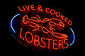 Live and cooked lobsters old neon light store sign dusty vintage fluorescent at a fish market Royalty Free Stock Images