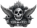 Live free or die grunge biker skull design with flame wings Stock Photo
