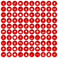 100 live nature icons set red Royalty Free Stock Photo