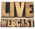 Live webcast in wood type internet concept a collage of isolated words vintage letterpress printing blocks Royalty Free Stock Photo