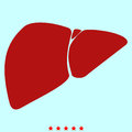 Liver it is color icon .