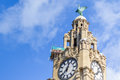 Liverpool, UK - 03 April 2015 - Clock tower of Royal Liver Building